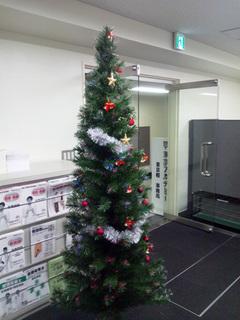 東京校事務局のクリスマスツリー